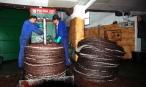 Dos de los operarios apilan las mallas con la pasta de oliva de la que se extrae el aceite. Foto: Olearum