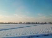 Peinando nieve. Texel. 2012