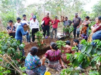 Registro fotográfico de hallazgos en fosa PachaquiAbaj, CaserioPatoquer, Aldea Hacienda Vieja, San José Poaquil (Chimaltenango)